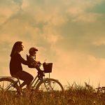 自転車 チャイルドシート
