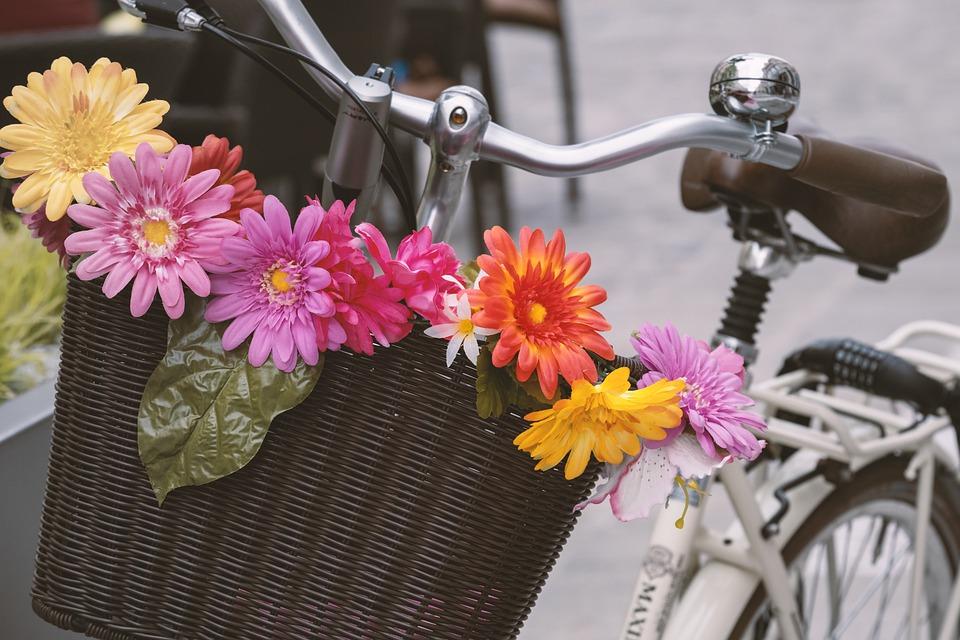 自転車 かご